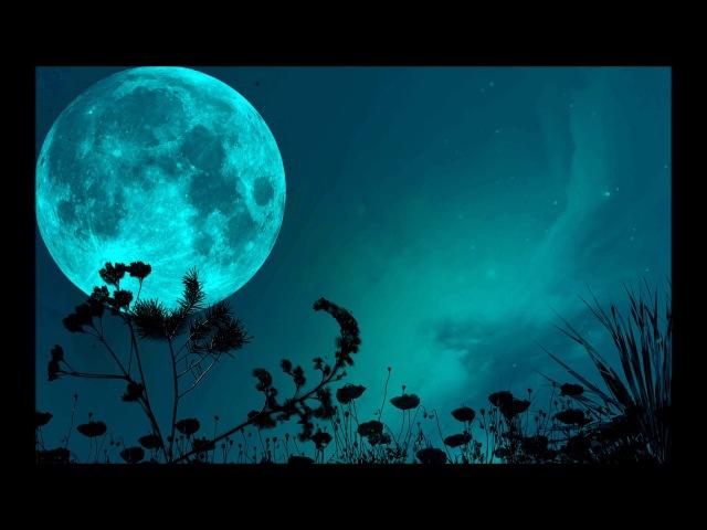 Melodic Techno V9 Hans Zimmer Marc DePulse Solee Tiësto Space Motion Romulus Moonwalk