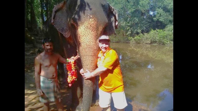 Индия Штат Гоа Слава Рейн Купаться со слонами не хотелось слишком брызгаются а вот фотосессия будет