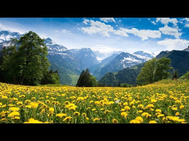 Красивые Обои Природа Бесплатно