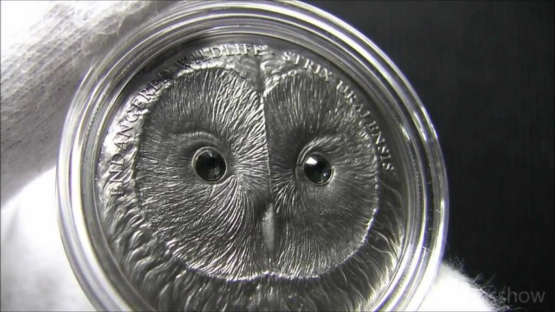 2011 Ural Owl Strix Uralensis Mongolia 500 Togrog Antique finish 999 Silver Coin