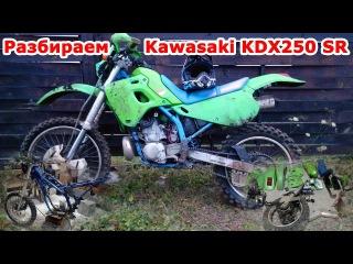 Разбираем Kawasaki KDX250. Эндуро потрошители, часть №1. Реставрация мотоцикла
