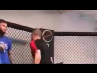 Shocking video_ Jean-Claude Van Damme almost KO Cody Garbrandt during sparring