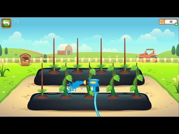 Belajar Menanam Wortel dan Kol Mengenal Sayuran dan Bercocok Tanam Video Belajar Anak