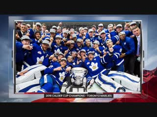 NHL 2018-2019 / RS /  / Detroit Red Wings - Toronto Maple Leafs