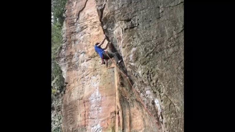 Weekend Whipper: Butt in Face