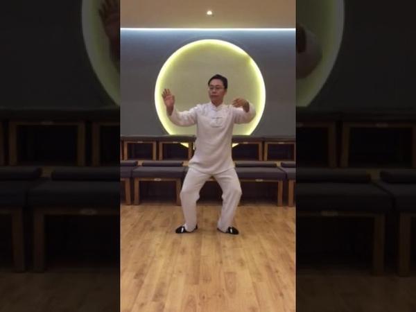 2 shi lu shi в исполнении Мастера Ван Лина