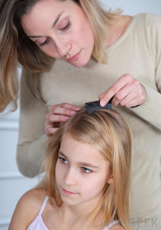 Сок Нони можно использовать для лечения вшей.