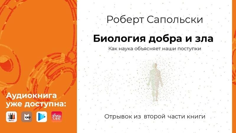 Отрывок Главы 12 аудиокниги Роберта Сапольски «Биология добра и зла»