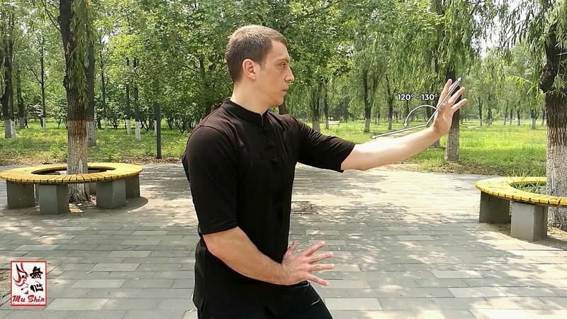 Xingyi Quan Ten Minute Primer - San Ti Shi Post Standing