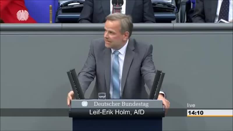 Leif Erik Holm AFD- Die Wirtschaft boomt nicht wegen sondern trotz ihrer Politik-