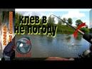 Рыбалка спиннингом на малой реке. Клёв щуки в непогоду.