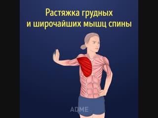 zerofat - растяжка всех мышц