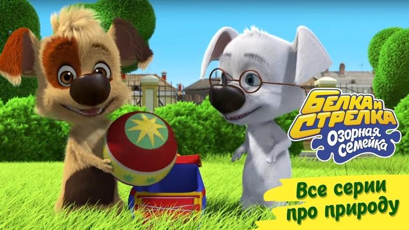 Озорная семейка - Все серии про природу   Поучительный мультсериал для детей