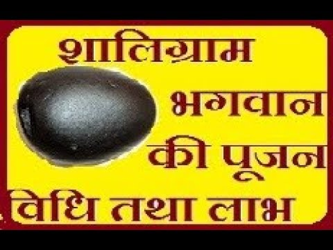 विष्णु सालिग्राम पूजा की विधि तथा लाभ, worship shaligram stone mantra