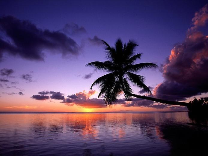Остров Муреа во Французской Полинезии, изображение №6