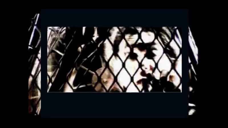 BABYLON ZOO Spaceman Official Video