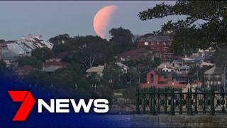 2019 lunar eclipse seen from Sydney Harbour   7NEWS