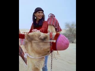 Пустыня дубая навстречу приключениям!