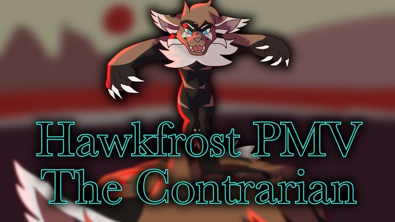 Hawkfrost PMV:: The Contrarian