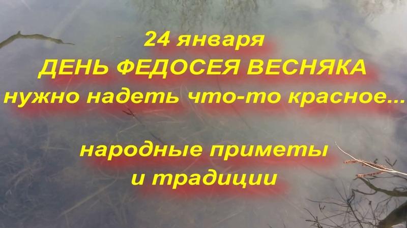 24 января ДЕНЬ ФЕДОСЕЯ ВЕСНЯКА что нельзя делать в этот день народные приметы и традиции