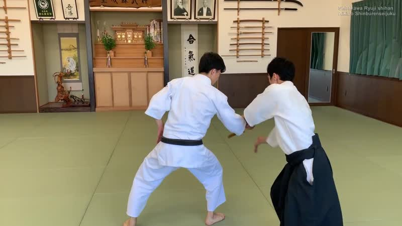 Aikido Special Knife defense techniques