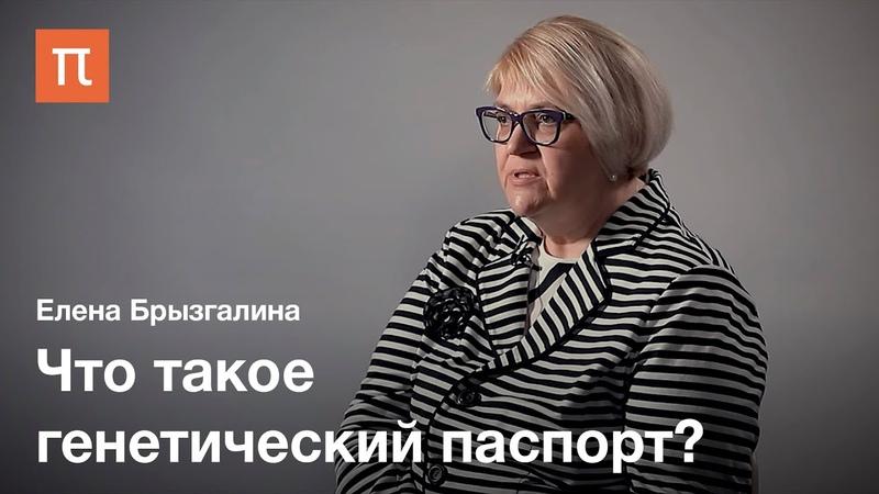 Генетические паспорта — Елена Брызгалина / ПостНаука