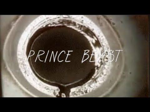 Prince Beast - BladeRunner (inspired by MIAs Bamboo jamba)