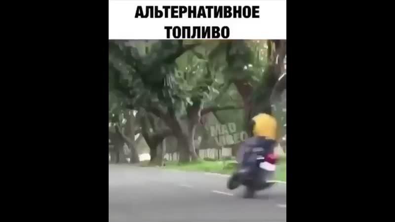 тополево