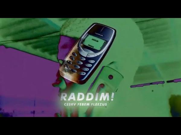 RADDIM - CESRV ft FLEEZUS FEBEM