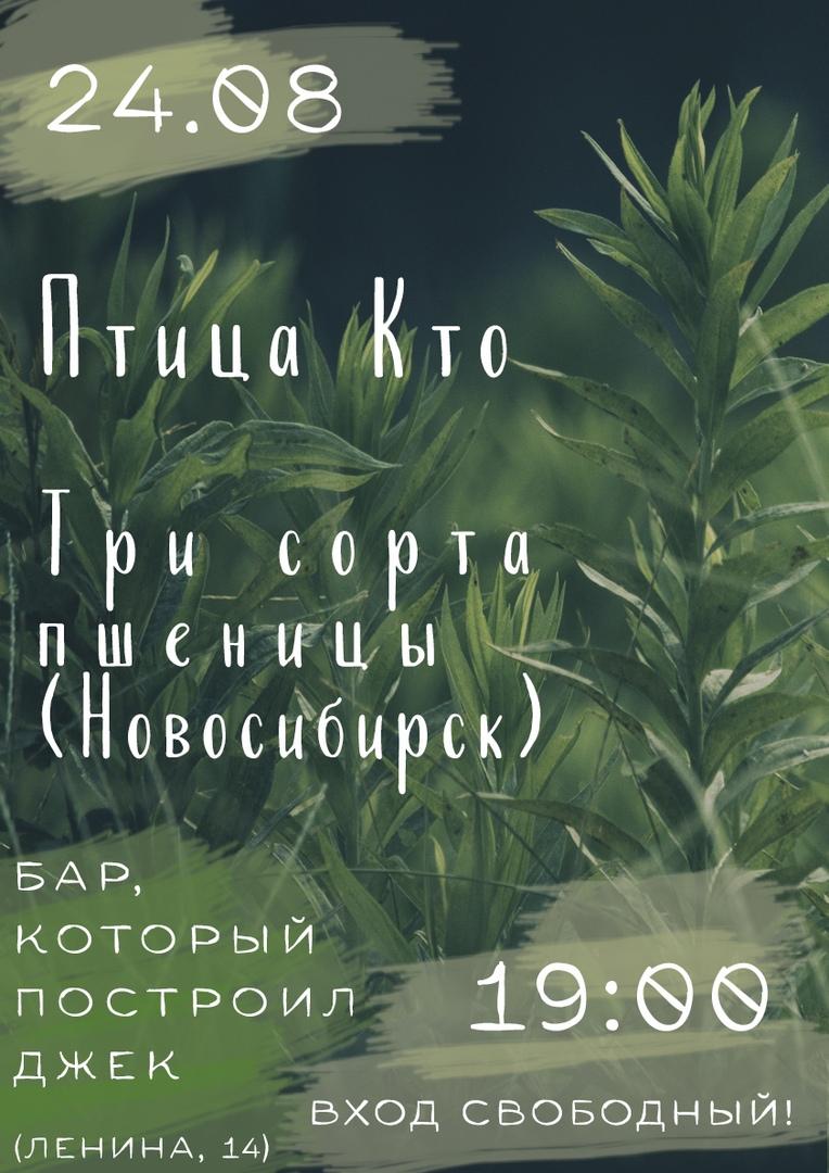 Афиша 24.08 / Птица Кто / 3 Сорта Пшеницы(Нск) / БКПД