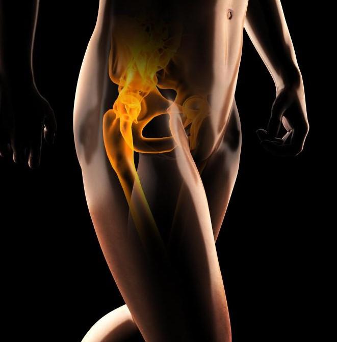 Синовиальная жидкость может быть найдена в тазобедренных суставах.