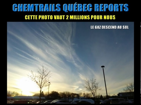 Anonymous Plus Chemtrails QUÉBEC Reports 2019