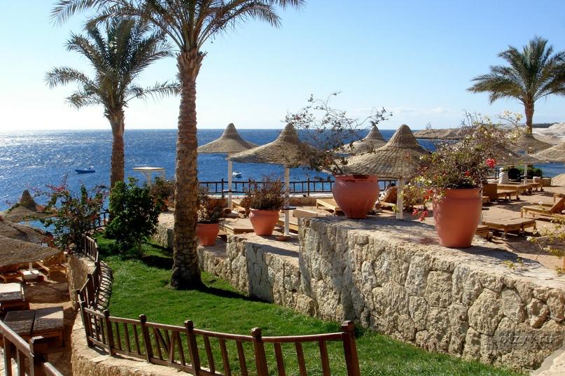 Обзор курорта Шаркс-Бей (Египет), изображение №3