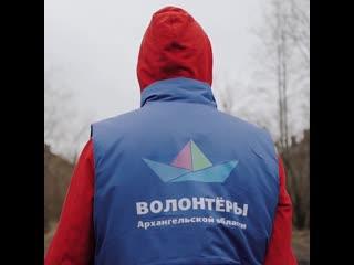 Волонтеры Архангельской области в проекте #МыВместе
