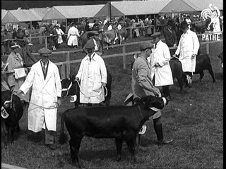 """""""Country Life - On London's Doorstep""""! (1933)"""