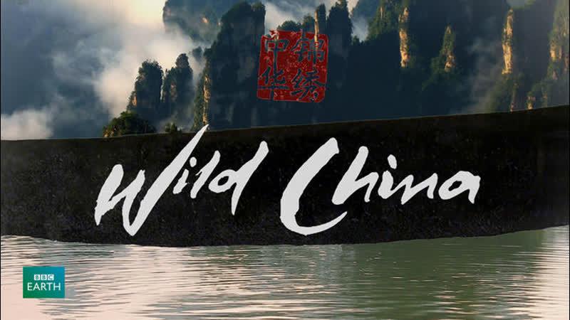 BBC Дикий Китай 3 серия Тибет
