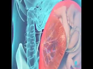 Если бы человек обладал рентгеновским зрением, вот как он видел бы беременную женщину. согласитесь, чудо же?!