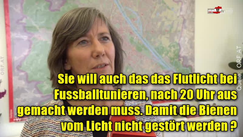 Sind GRÜNE Geisteskrank = Birgit Hebein Werner Kogler und Van der Bellen