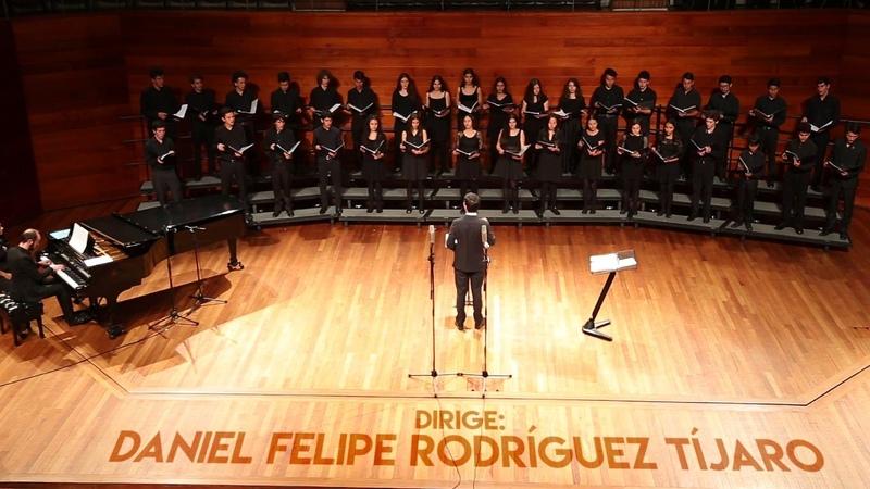 Mudanzas Dir Daniel Felipe Rodríguez Tíjaro