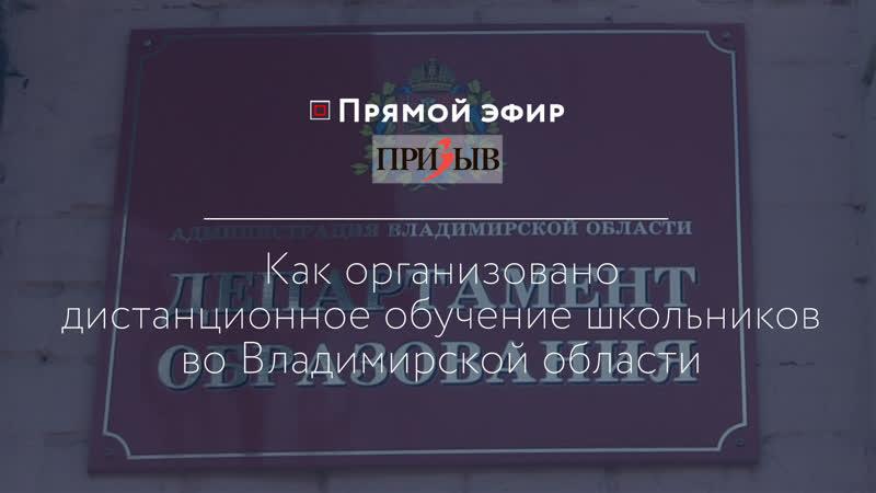Как организовано дистанционное обучение школьников во Владимирской области