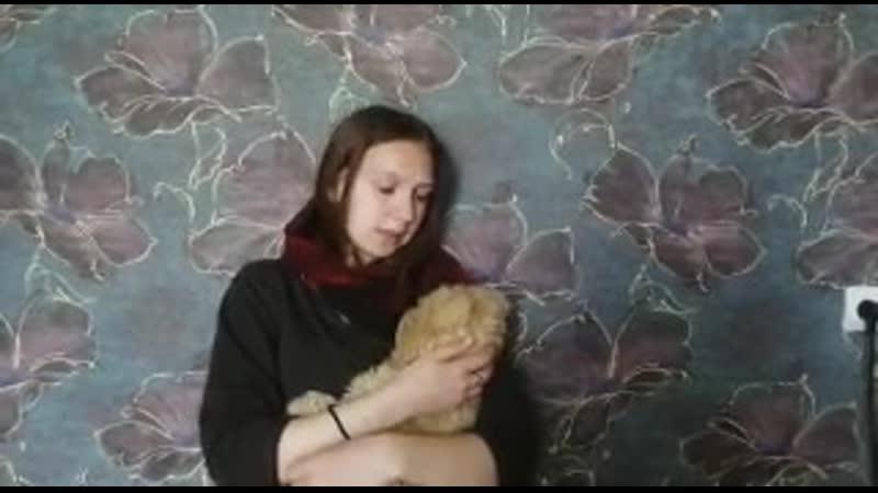 Александра Косякова Лора Тасси Дети войны