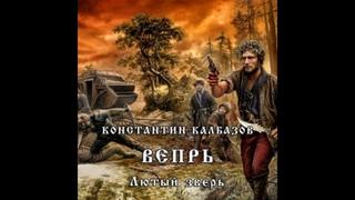 Калбазов Константин - Вепрь 2, Лютый зверь Дамир Мударисов 2017 Аудиокнига Попаданцы