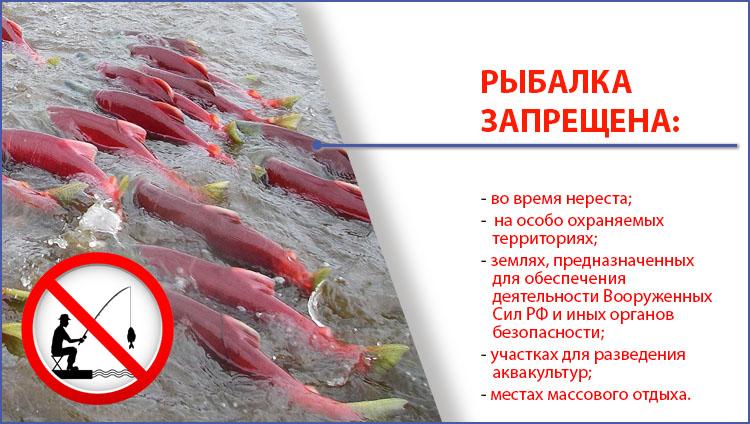 Новый закон о рыбалке в 2020 году в самарской области