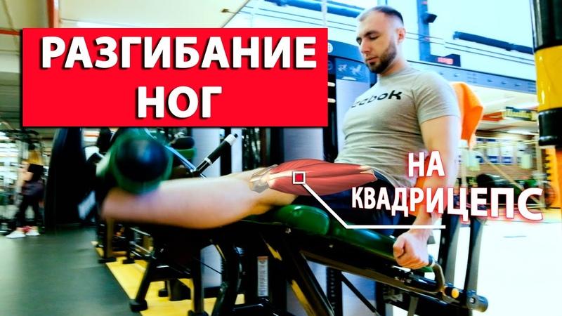 Разгибание ног сидя в тренажере Упражнение для КВАДРИЦЕПСА