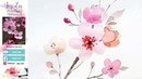 Cherry Blossom Flower Painting with Watercolors - Spring