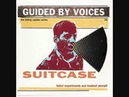 Guided by Voices - Shrine to the Dynamic Years (Athens Time Change Riots)