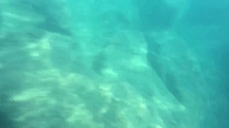 Sea 2019 ( No ordinary girl - ost H2O просто добавь воды)