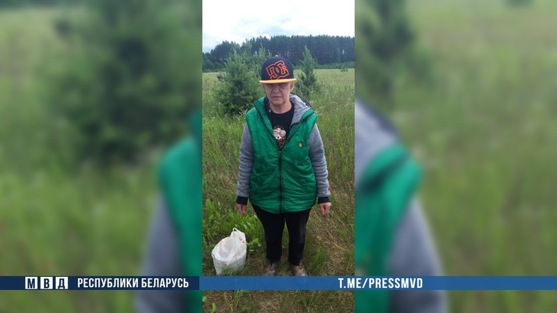 В Славгородском районе милиция нашла заблудившуюся пенсионерку. МЧС помогло ей выбраться из болота