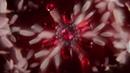 Carolina Herrera Sandal Ruby I New Perfum