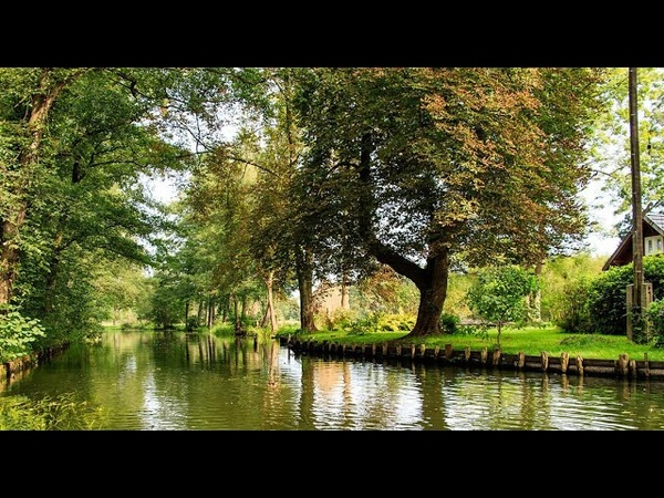 Дикая природа Германии 3 серия Леса реки Шпрее